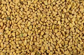fenugreek to increase breast milk