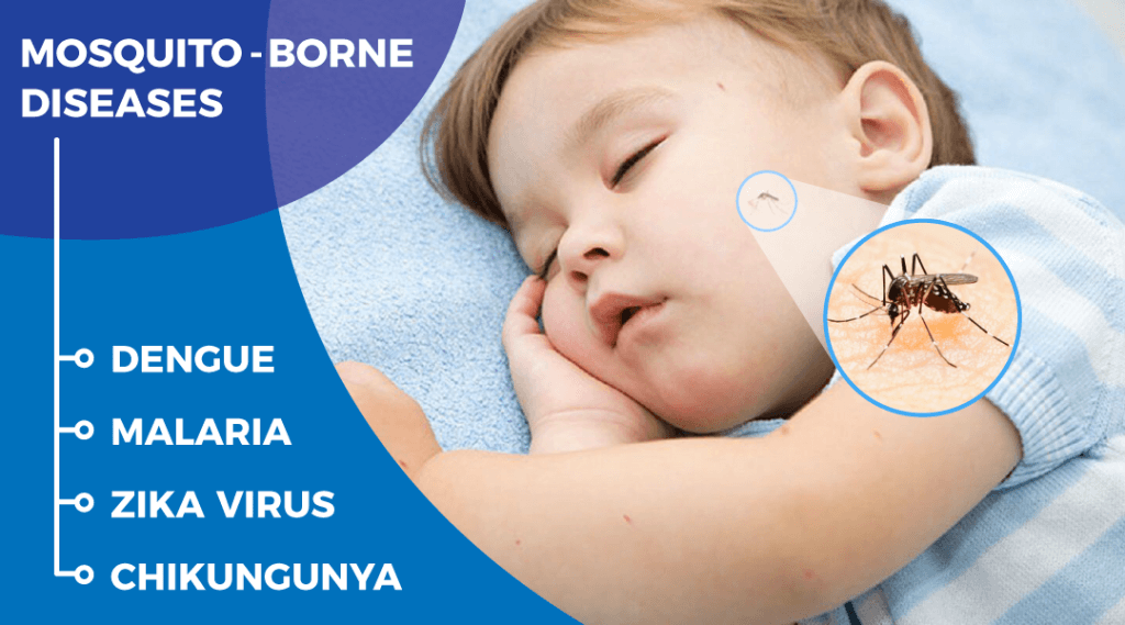 Mosquito Bites In Babies – Diseases, Symptoms & Treatment