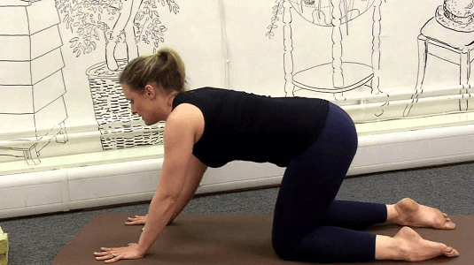 Angry cat pose exercise during pregnancy