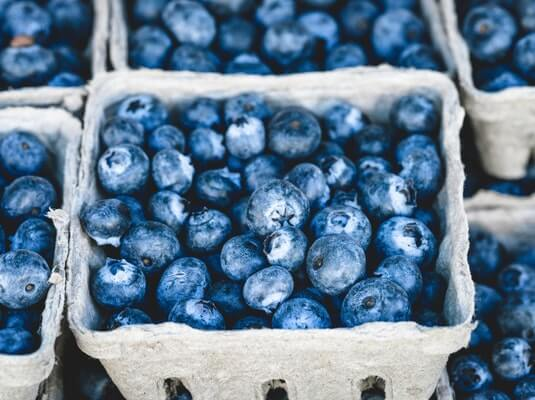 blueberry for baby's brain development
