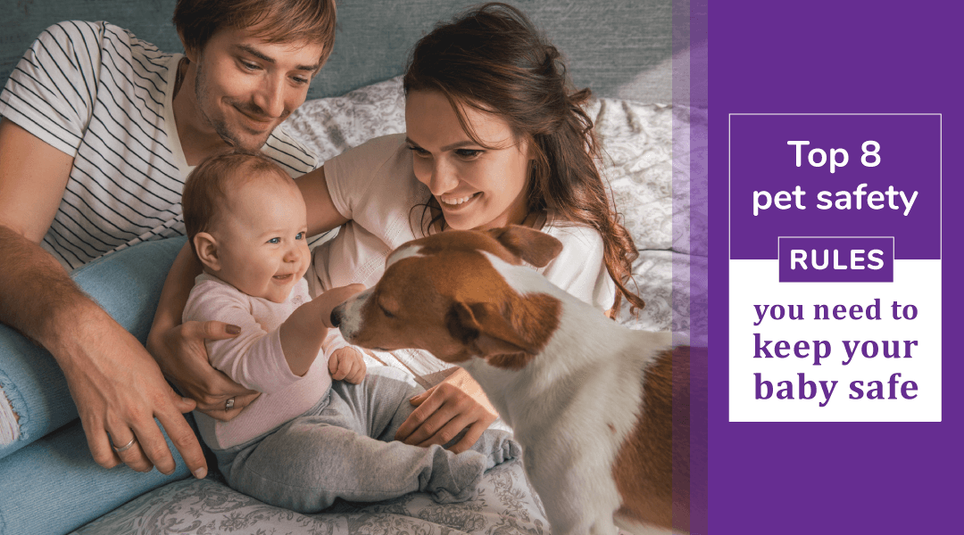 Safety rules to follow with baby and pet at home
