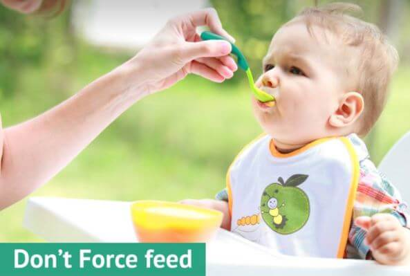 dont force feed new food to baby